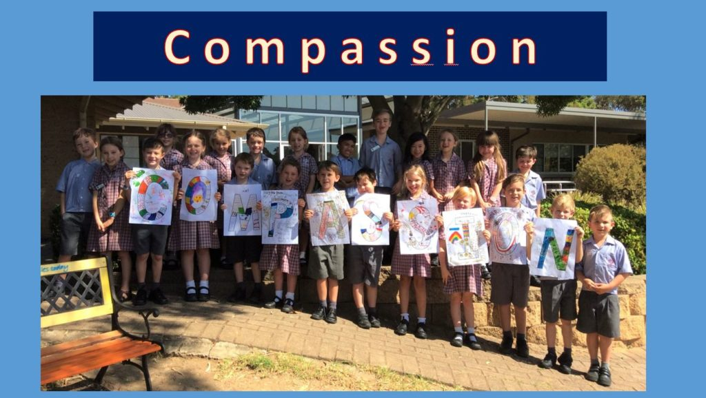 Year 1_2D_Project Compassion