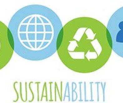 sustainability head