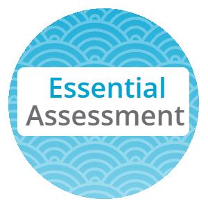 essential-assessment[1]